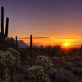 An Arizona Winter Sunrise by Saija  Lehtonen