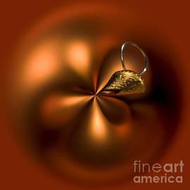 An Orb of Orange by Anne Gilbert