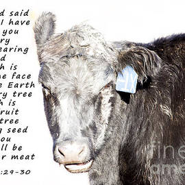 And God Said by Janice Pariza