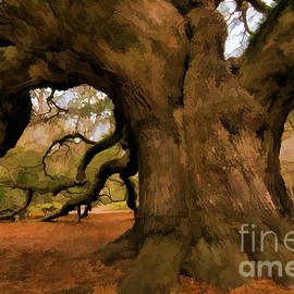 Angel Oak Tree by Sharon Seaward