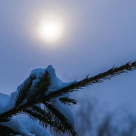 Alexander Senin - Antisipation Of New Year