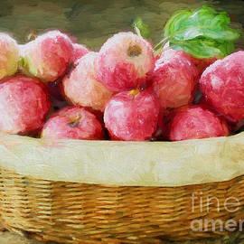 Apple Harvest by Darren Fisher