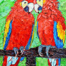 Ana Maria Edulescu - Ara Love A Moment Of Tenderness Between Two Scarlet Macaw Parrots