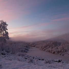 Pekka Sammallahti - Arctic Sunrise