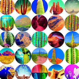 Arizona Collage by Michelle Dallocchio