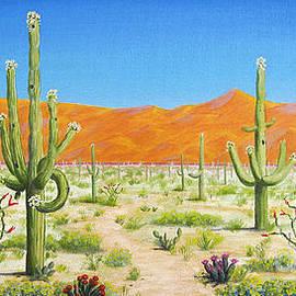 Jerome Stumphauzer - Arizona Desert
