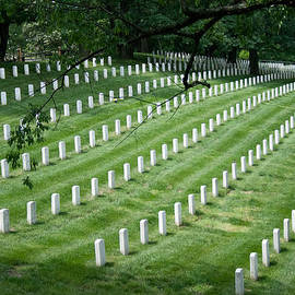 Arlington National Cemetery by Tim Stanley
