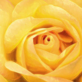 Artistic Yellow Rose by Don Johnson