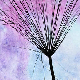 Artsy Abstract Silhouette by Sabrina L Ryan