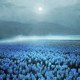 Atmospheric Field Of Blue Tulips In by Viviana Gonzalez