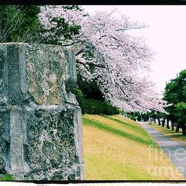 Atsugi Pillbox Walk  I by Jay Mann