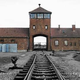 Kelly Schutz - Auschwitz II Birkenau