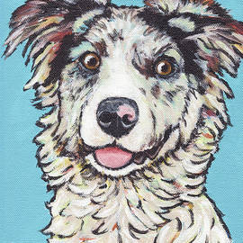 Australian Shepherd by Greg and Linda Halom