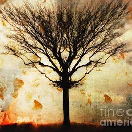 Autum Wind by Edmund Nagele