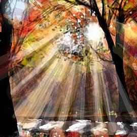 Autumn 4  by Angie Braun