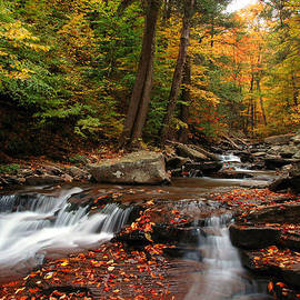 Dan Myers - Autumn At Ricketts Glen