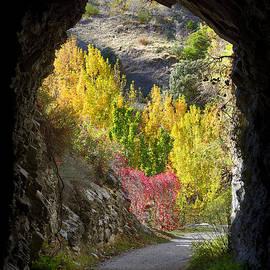Guido Montanes Castillo - Autumn cave