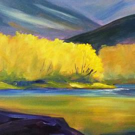 Autumn Color by Nancy Merkle