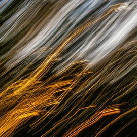Autumn Desire by Steve Harrington