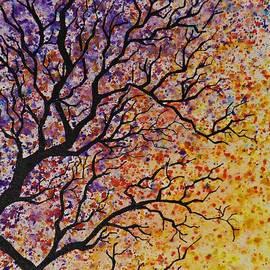 AmaS Art - Autumn Fantasy