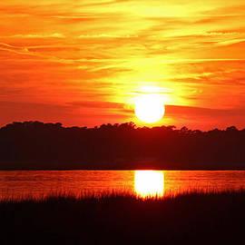 Cynthia Guinn - Autumn Gold Sunset