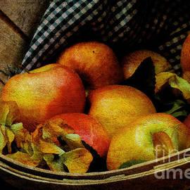 Lois Bryan - Autumn Harvest