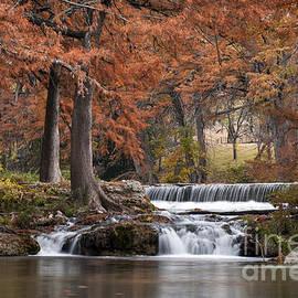 Autumn Idyll by Bob Phillips