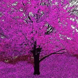 Pink or Purple Tree Impressions #6 Pink by Saundra Myles