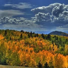 Autumn in Colorado by Tony Baca