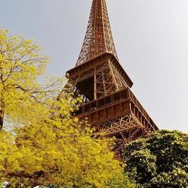 Autumn in Paris at the Eiffel Tower by David Lobos