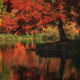 Autumn In Red by Karol Livote