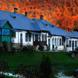 Daliana Pacuraru - Autumn in Romania
