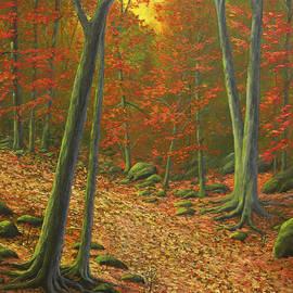 Frank Wilson - Autumn Leaf Litter