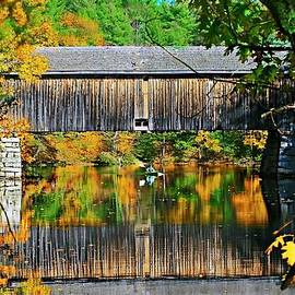Autumn Luxury by Catherine Melvin