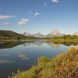 Brian Harig - Autumn On Oxbow Bend - Mount Moran - Grand Teton National Park Wyoming