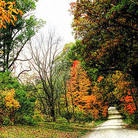 Autumn on the Dirt Roads by Pat Cook