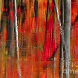 Autumn Reds  by Andrea Kollo