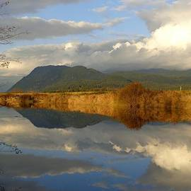 Autumn Reflections - Alouette River, Maple Ridge, British Columbia by Ian Mcadie