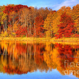 Autumn Reflections Minnesota Autumn by Wayne Moran