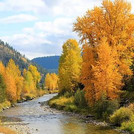 Athena Mckinzie - Autumn River in Montana