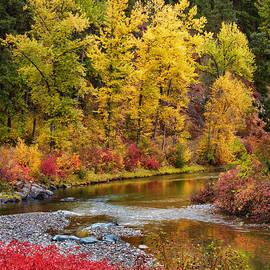 Mary Jo Allen - Autumn River