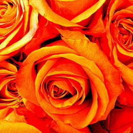Kathy Barney - Autumn Roses Bouquet