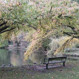 Brian Chase - Autumn Serenity