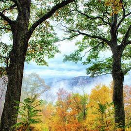 Autumn Trees in the Blue Ridge II by Dan Carmichael