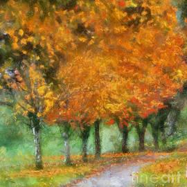 Kerri Farley - Autumn Trees