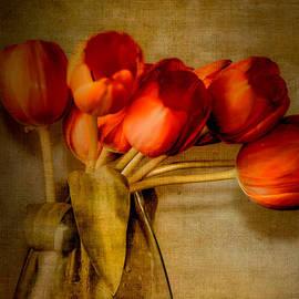Julie Palencia - Autumn Tulips