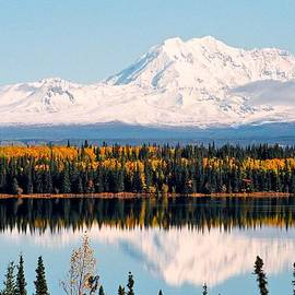 Juergen Weiss - Autumn View of Mt. Drum - Alaska