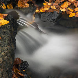 Colin Woods - Autumn Waterfall