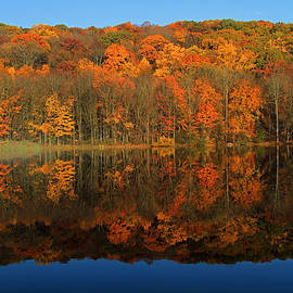 Autumns Colorful Reflection by Karol Livote