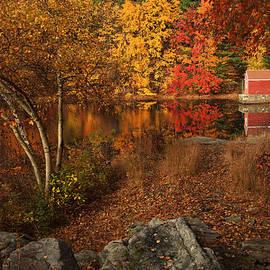 Autumns Path by Karol Livote